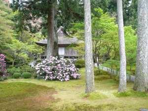 20110430gokuraku_ojo